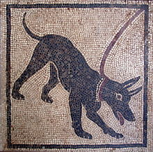 La fidelidad infinita de los perros, según Plinio