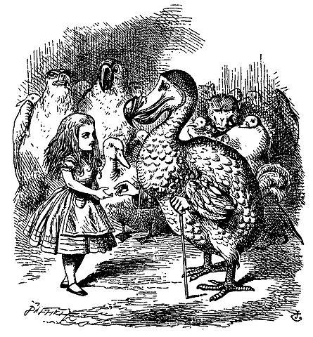 El último ejemplar de dodo fue quemado por el director de un museo